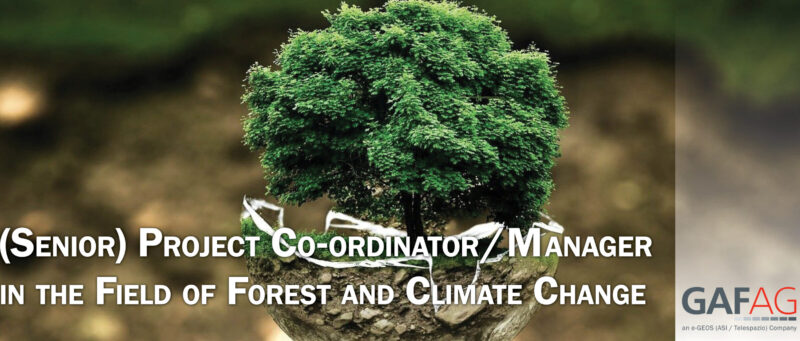(Senior) Project Co-ordinator/Manager in the Field of Forest and Climate Change