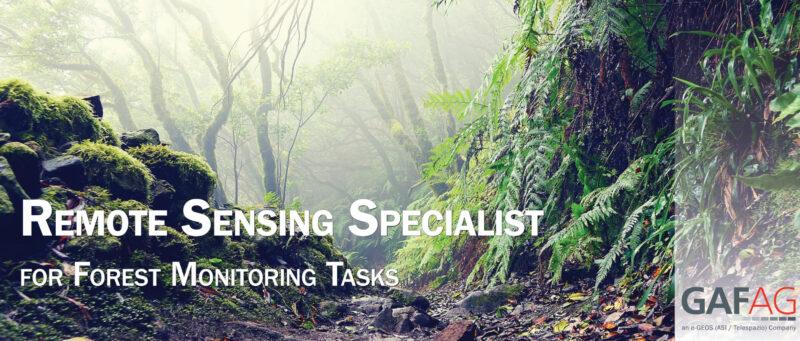 Job offer: Remote Sensing Specialist for Forest Monitoring Tasks